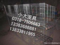 鹌鹑笼 鹧鸪笼 12窝兔笼 12窝鸽笼 16窝鸽笼 9窝兔笼